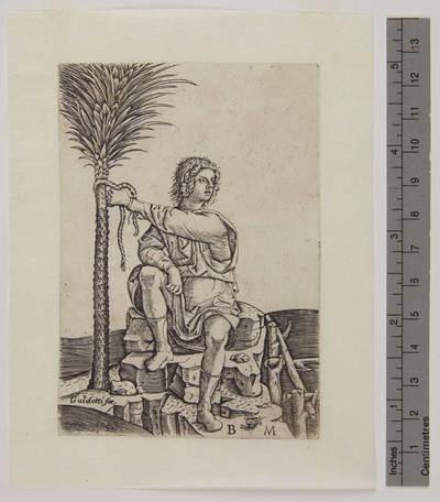 uomo seduto vicino ad una palma