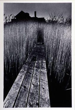 La maison noire, New York 1964