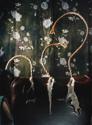 Still life with a chair, ropes, wallpaper and thread