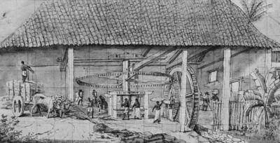 Suikerfabriek in Brazilië