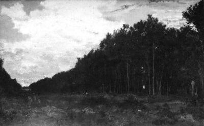 La lisière du bois