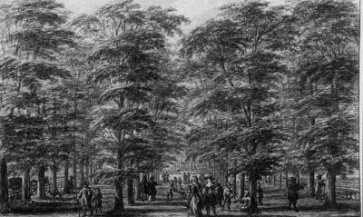 Het Haagse bos (Den Haag, Nederland)
