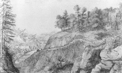 Berglandschap met beboste rots