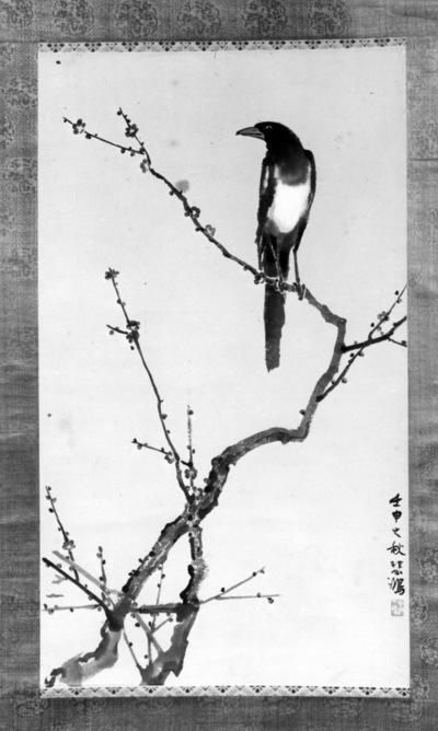 Pie sur une branche