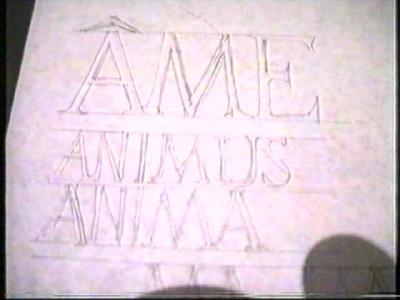Ame - Animus - Anima (Am, Habemus)