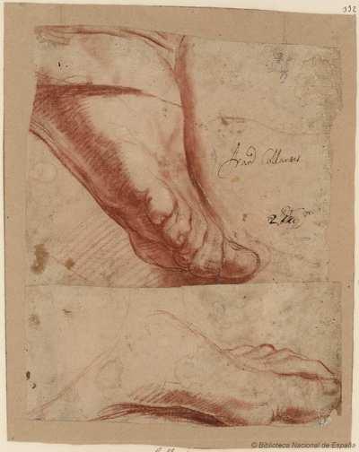 [Estudios de pies] [Material gráfico]