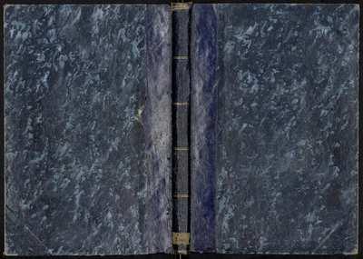 Image from object titled Documentos sobre la construcción de dos pirámides en la provincia de Quito, marcando los límites del grado terrestre [Manuscrito]