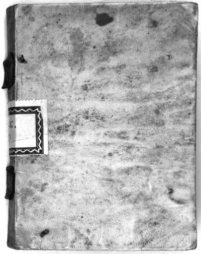 Image from object titled Cánones o fundamentos comprehendidos en la explicación de la Filosofía botánica de Lineo [Manuscrito]