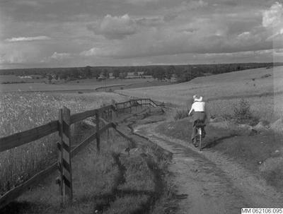 Image from object titled landsväg, kvinna, landsbygd, staket, cykel