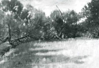Peisaj cu sălcii
