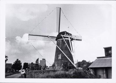 Rond stenen korenmolen Gerritsens molen te Silvolde. Gezicht op de achterzijde. Foto 9/10/1969.