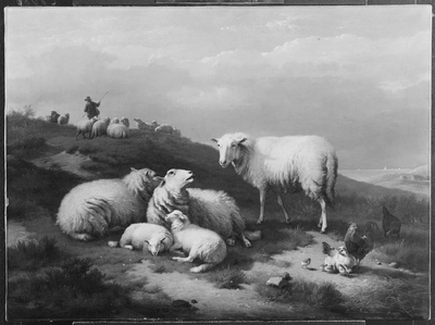 Image from object titled Dune Landscape with Resting Sheep