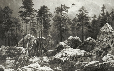 Image from object titled Study of a Forest at Hogdal