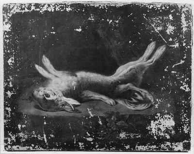 A Dead Malformed Hare