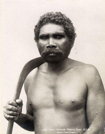 boomerang, porträtt, man, fotografi, photograph