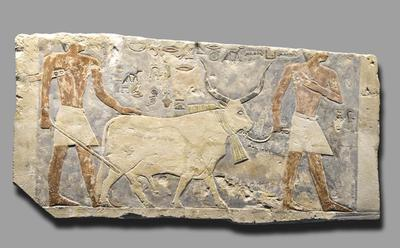 Image from object titled Relief@eng, Relief