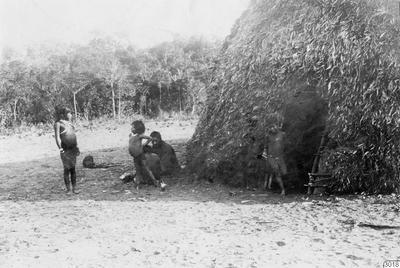 Motiv: Hydda. Lokal: Uazirimi, R.Jauru, Brasilien. Stam: Paressi-Kabisi. Foto av: Max Schmidt. Dato: 1910. Erh.: av dito. (katalogkort); 003018; Sydamerika