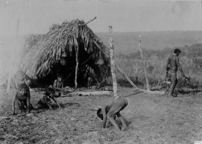 Motiv: Lekande barn. Lokal: Kalugare, R.Jauru, Brasilien. Stam: Paressi-Kabisi. Foto av: Max Schmidt. Dato: 1910. Erh.: av dito. (katalogkort); 003032; Sydamerika