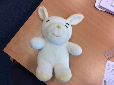 Image from object titled The Lost Teddy