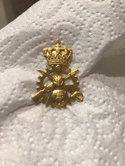 Image from object titled My golden badge from Denmark