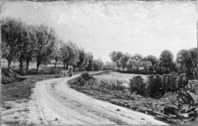Landevej med piletræer i nærheden af Bækkeskov; Landevej med piletræer i nærheden af Bækkeskov