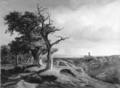 Image from object titled A view of Bohemia from Oberlausitz