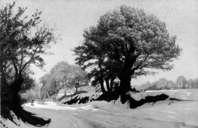 Vinterbillede fra Bretagne. Den første sne