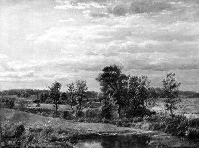 Landscape with a Bog