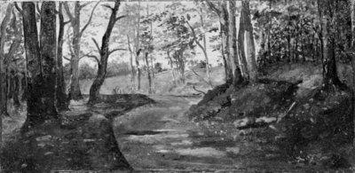 A Path through a Wood