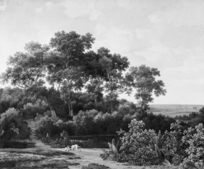 Image from object titled The Game Reserve near Arnheim