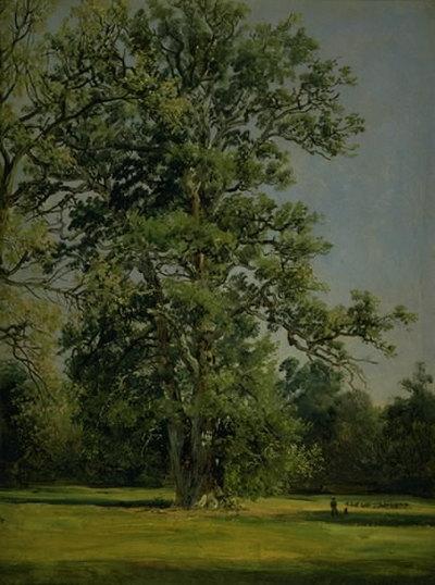 Image from object titled An Oak. View of the Garden at Wörlitz near Dessau