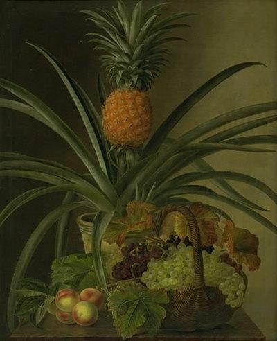 En ananas og andre frugter
