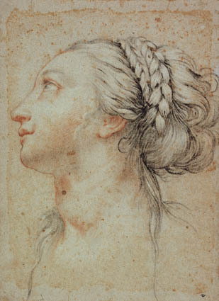 Head of a young woman in profile to the left