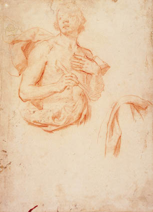 Image from object titled Young man, half length with bared torso, and a drapery study