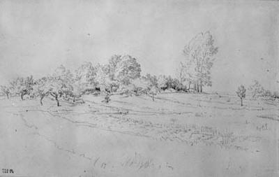 Image from object titled Landskab med et engdrag op imod en træbevoksning