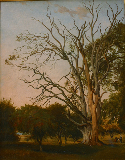 Woodland Scene with a Dead Tree