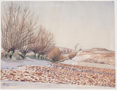 Landskab med piletræer og pløjemark i sne