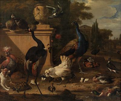 Hen Run at a Manor