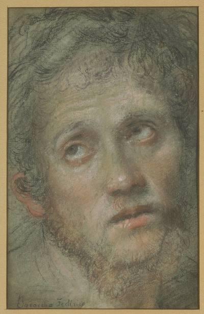 Głowa młodego mężczyzny