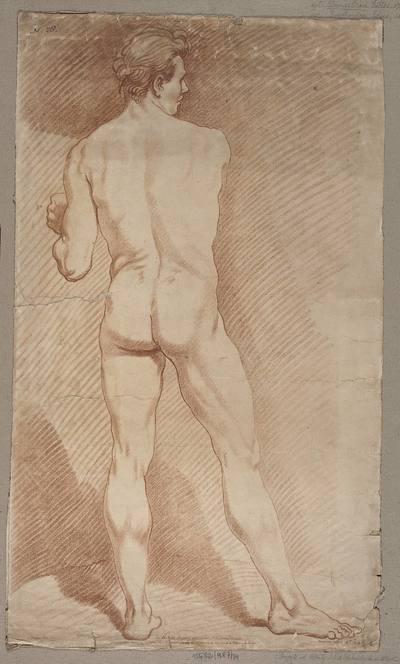 Studium stojącego aktu męskiego widzianego od tyłu.