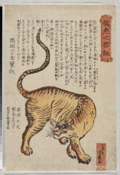 Mo tora-no ryaku setsu (Wierny opis budzącego grozę tygrysa)