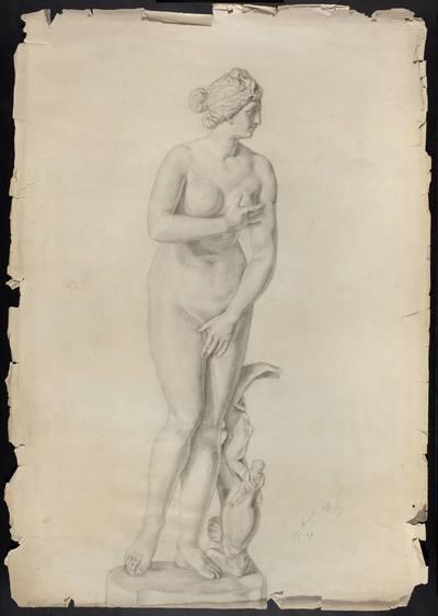 Odrys z kopii rzeźby Praksytelesa w typie Wenus Kapitolińskiej