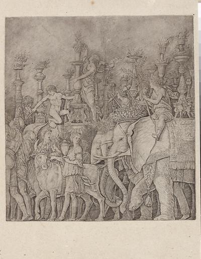 Pochód słoni