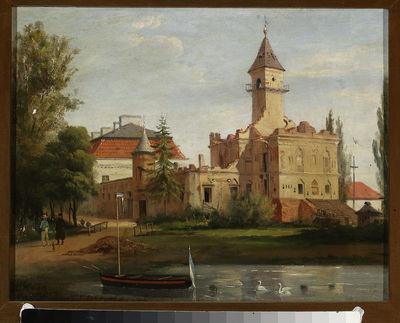 Widok zamku w Radziejowicach