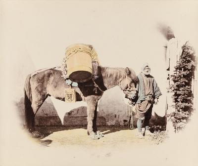 Mann mit Lasten tragendem Pferd