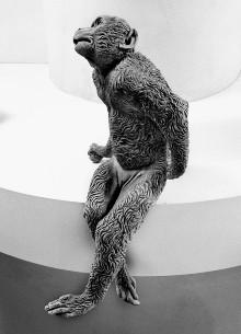 Der Affenbrunnen — Affenweibchen mit Frucht (?) in rechter Pfote