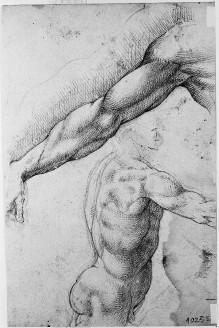 Studienblatt zur Schmiede des Vulkan in der Sala degli Elementi im Palazzo Vecchio — Studie zu einem ausgestreckten Arm und einem männlichen Torso in Seitenansicht, Folio recto