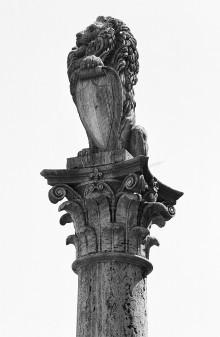 Colonna del Marzocco