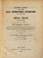 Image from object titled Rapido cenno intorno alla costituzione stazionaria in genere e della peste in ispezie.