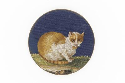 Rund kopparplatta med vit och gul katt på gräsmatta mot mörkblå fond i mosaik.